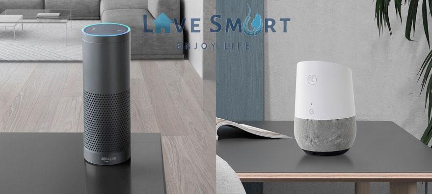 Amazon Alexa & Google Asistant