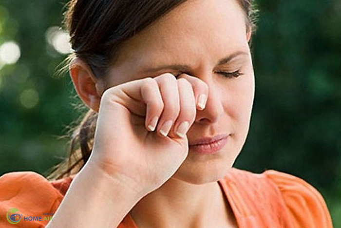 8 triệu chứng của dị ứng bụi